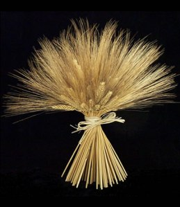 wheat-black